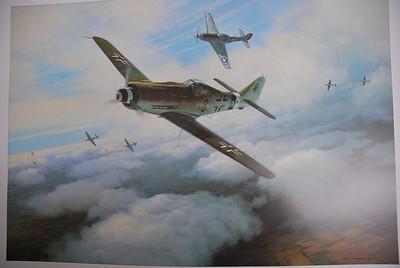 Warbird FW190