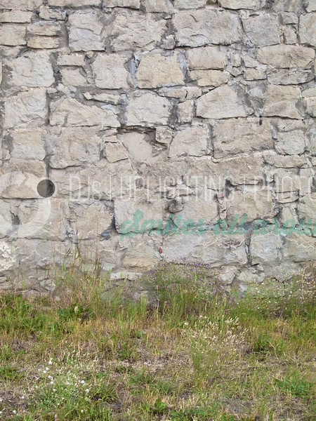 Old Stone Wall_batch_batch.jpg