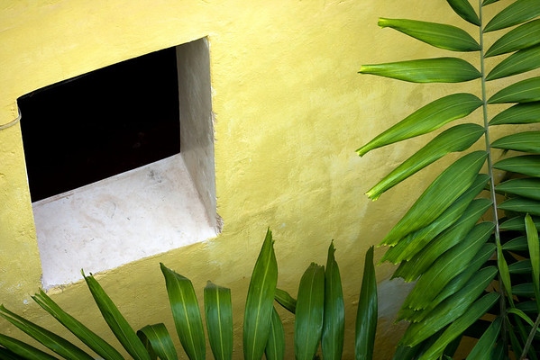WALLS, ARCHITECTURE + ABSTRACTS