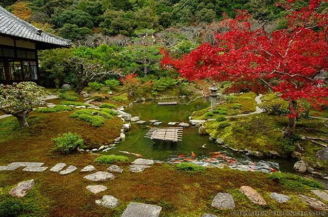 Koun-ji subtemple at Nazen-ji Temple image copyright Damien Douxchamps