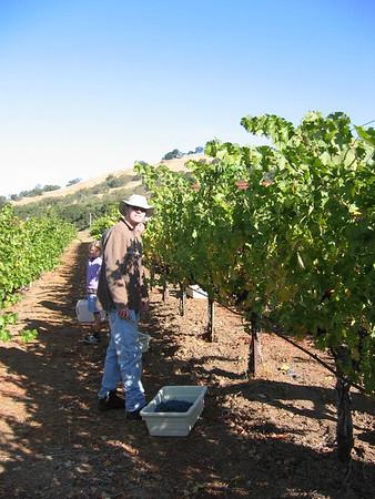 Harvest 2009