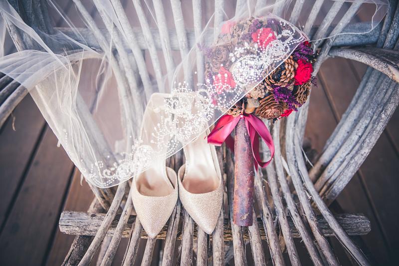 Rockford-il-Kilbuck-Creek-Wedding-PhotographerRockford-il-Kilbuck-Creek-Wedding-Photographer_G1A6728.jpg