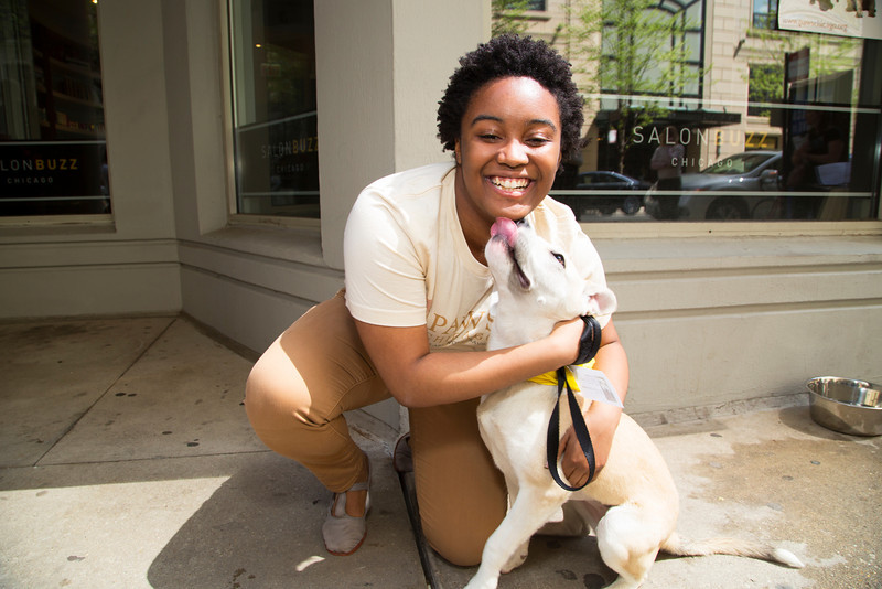 Volunteer with Dog 3 (20140518-AWT-GC-125).jpg