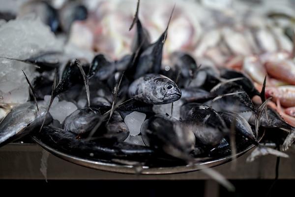 UAE 2018 Abu Dhabi Fish Market