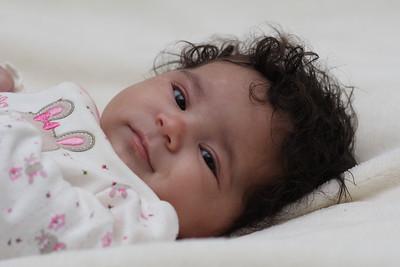 Baby Pomo