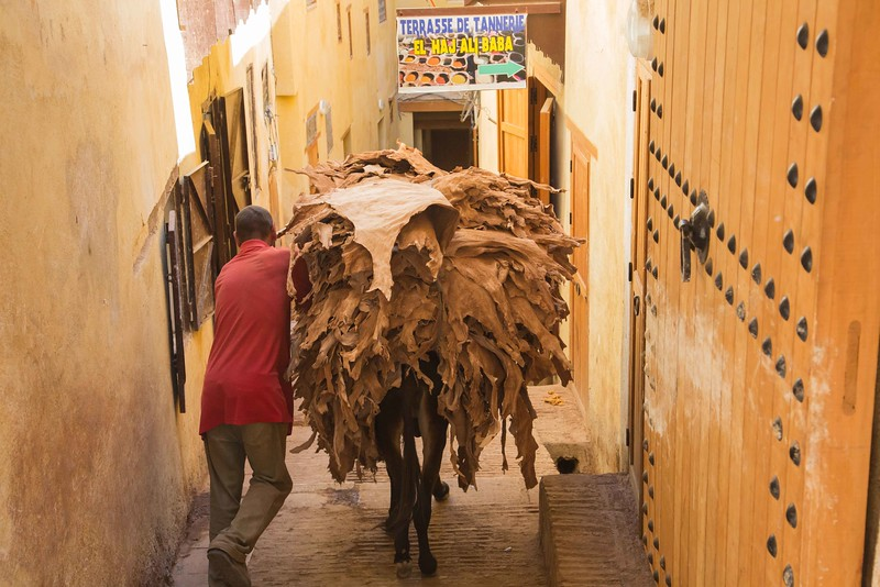 160923-072410-Morocco-9515.jpg