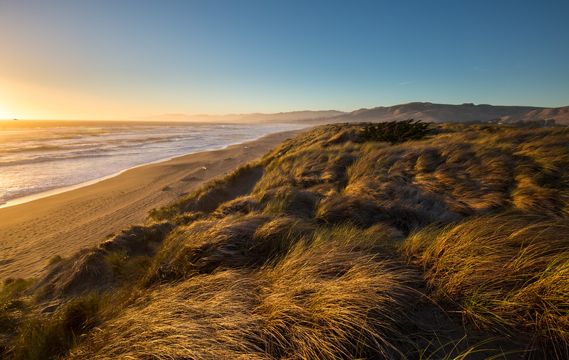 Coastal Dunes Sunset III
