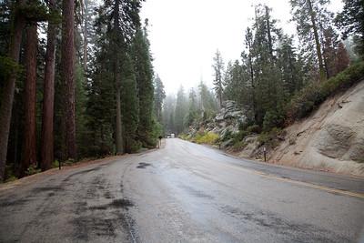 Sequoie General Grant Grove