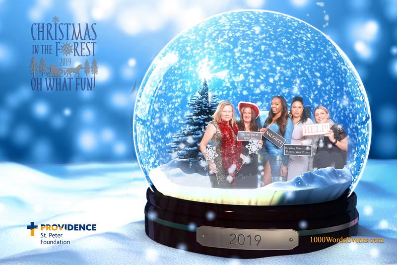 Providence Christmas Forest-065.jpg