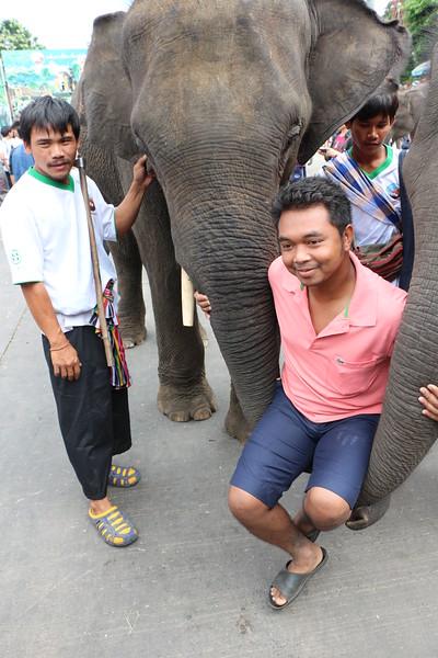 2014-11-14 Surin Elephant Welcome Feast 724.JPG