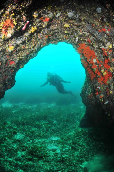 Grotte sous le sémaphore de Pomègues au Frioul.JPG