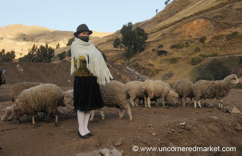 Watching Her Flock - Zumbahua, Ecuador