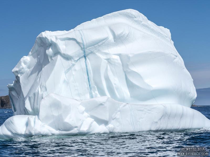 Iceberg 36    Photography by Wayne Heim