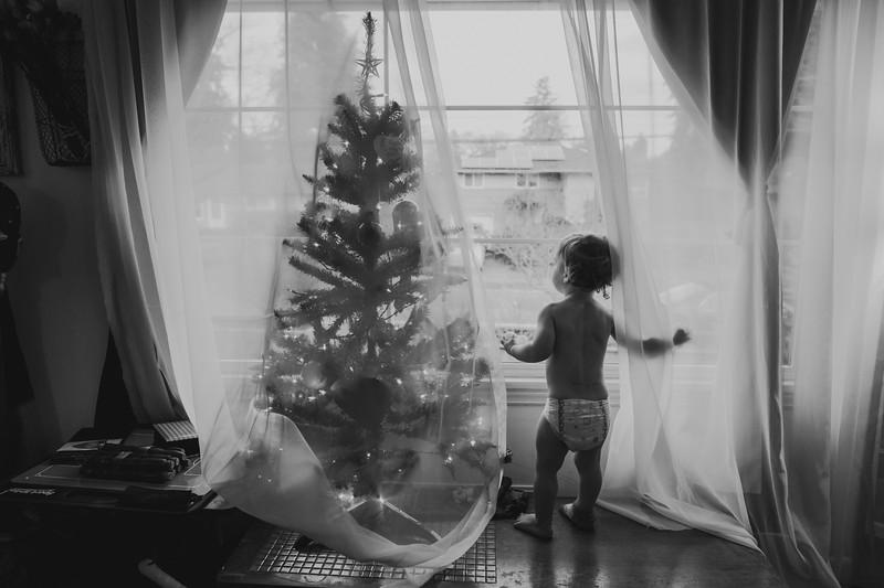 ChristmasShoreline-50.jpg