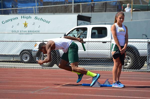 2014 Track Hart