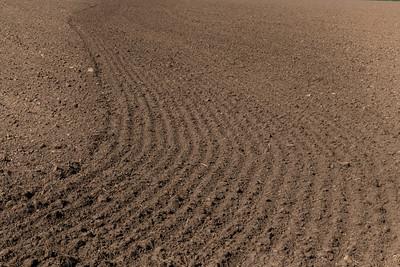 Just Soil