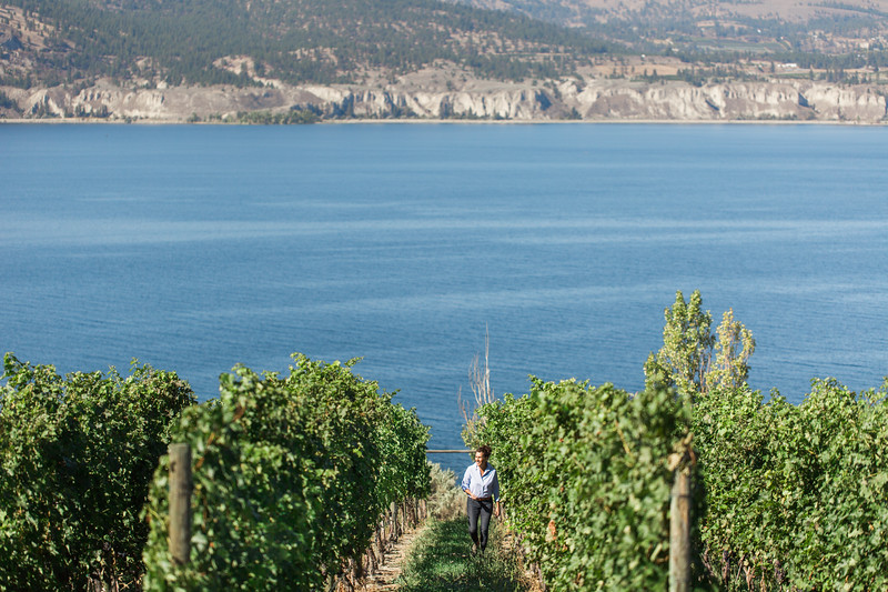 20160914_BC Wine Institute - Central & Southern Okanagan-1519.jpg