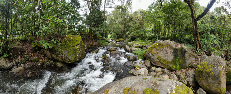 Savegre pristine river with rocks in the forest in Costa Rica