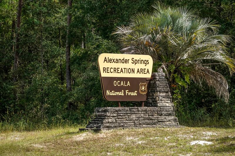 Alexander-Springs-92.jpg