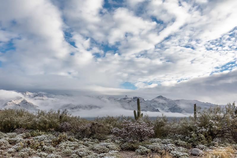 Sabino Snow 1-1-2019a-.jpg