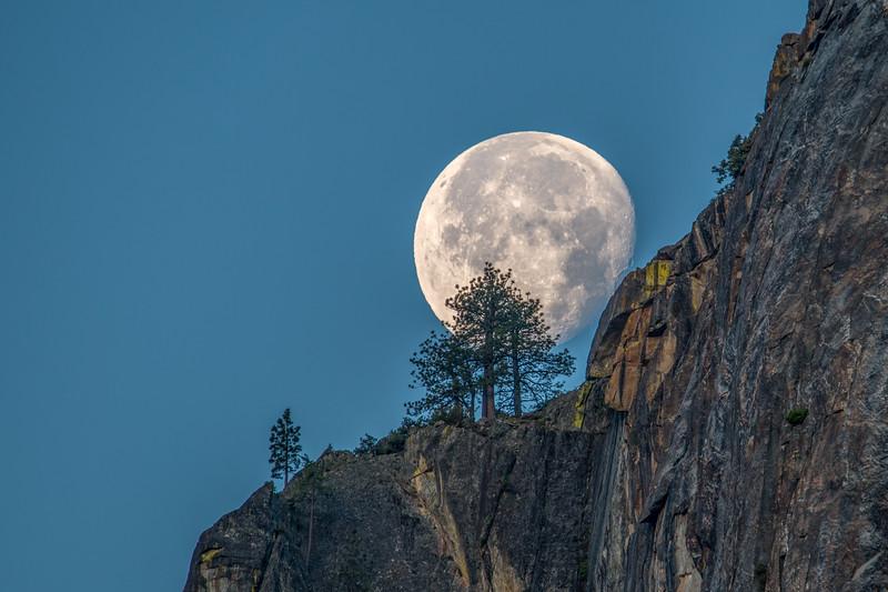 Moon Set. Yosemite Valley.