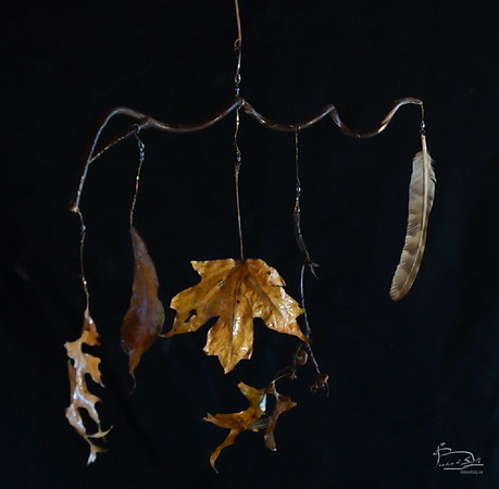 Ceiling feather and leaf mobiles