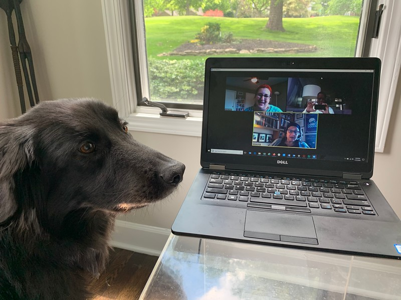 Ron Jones Runs A Virtual Meeting With Help From His Dog