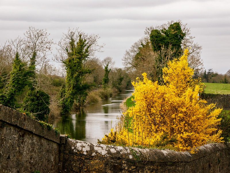 Pike Bridge near Maynooth