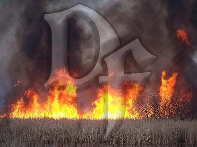 Large Brush Fire - Greece, NY 4/12/11