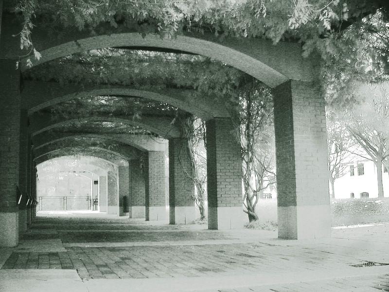 NCSU____Centennial_Campus_2.jpg