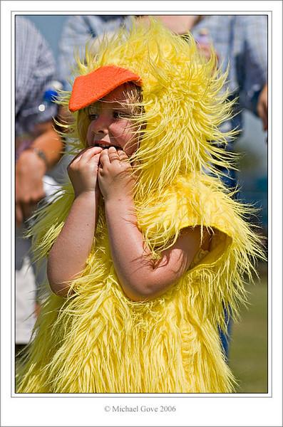 Chick (61622866).jpg