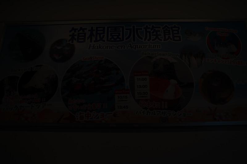 20190411-JapanTour--532.jpg