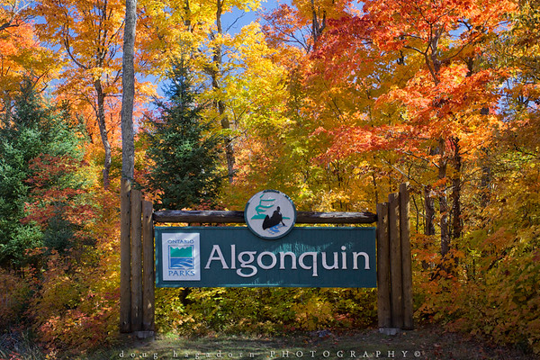 Algonquin & The North