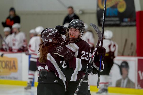 Central Wisconsin Storm Hockey