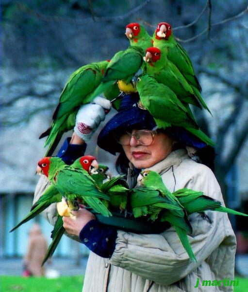 bird lady 3-8-2007.jpg