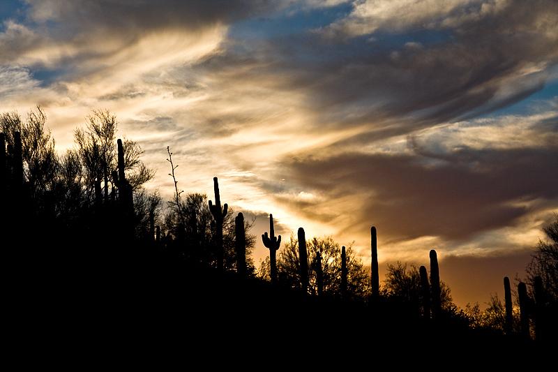 arizona-sunset_2398107683_o.jpg