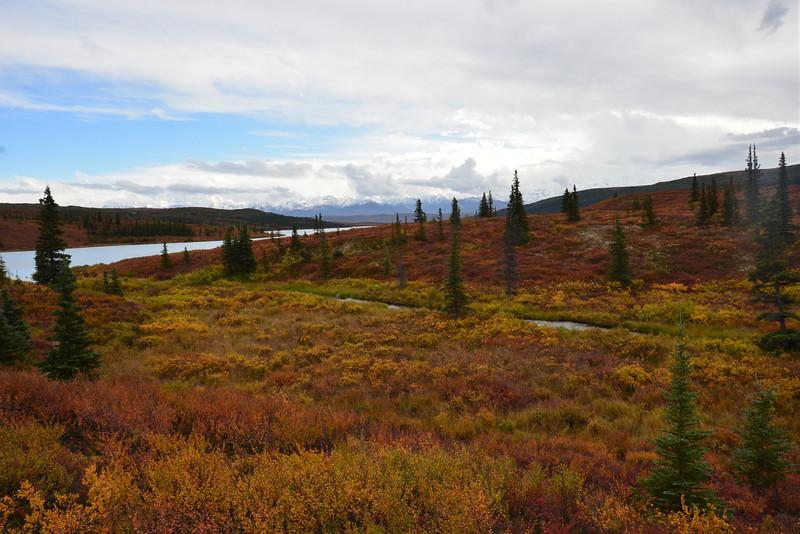 Alaska Fall 2013 - 189.jpg