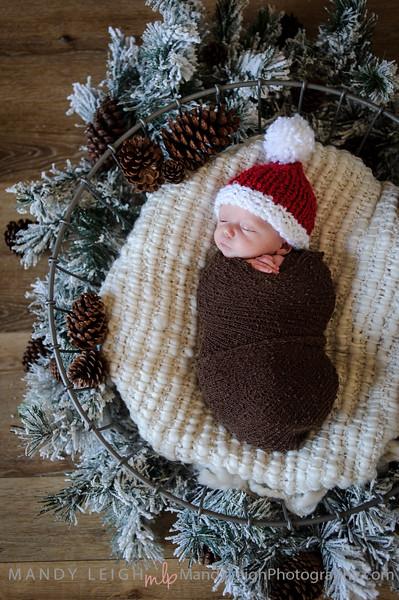 Christy Nags Newborn