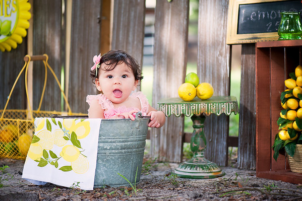 Lemonade/Farm mini - Ellerbusch Family