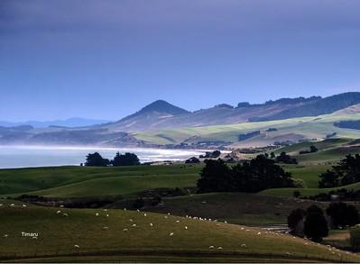 New Zealand 2016