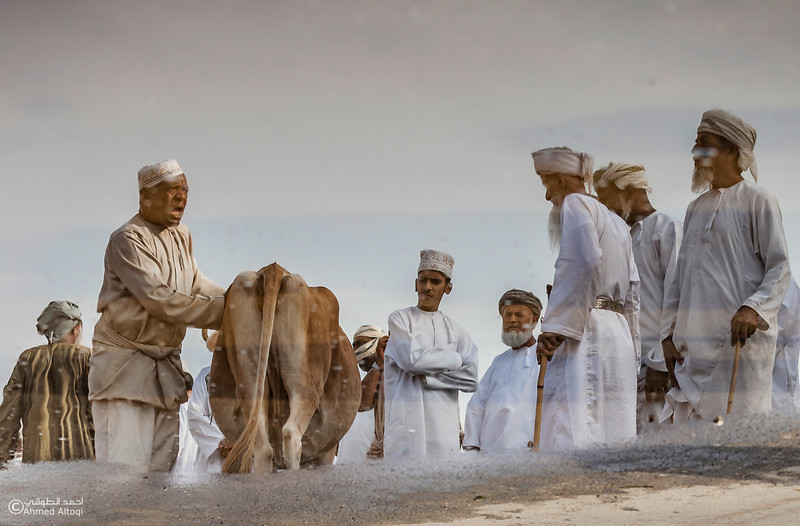 Traditional market (41)- Oman.jpg