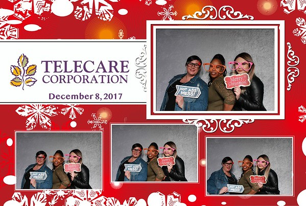 Telecare Corp. Holiday Outing