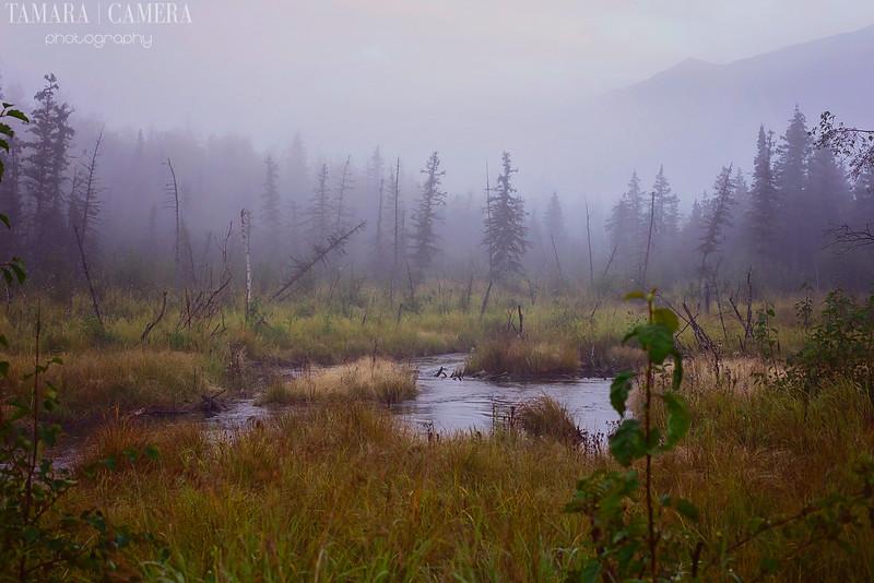 Eagle River6-6-2.jpg