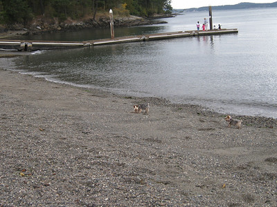 At the beach in Anacortes