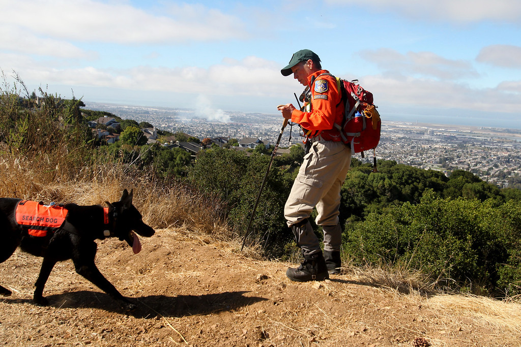 . Kato, a two-year-old German shepherd cadaver rescue dog and owner Peg Thompson, of Santa Clara County Sheriff\'s Search and Rescue team, follow the trail during the search for missing 22-month-old  Daphne Webb near Merritt College in Oakland, Calif., on Saturday, Aug. 24, 2013. Oakland police, along with Alameda County Sheriff and Santa Clara County Sheriff volunteer rescue teams and FBI agencies, searched for evidence of the Oakland child. (Ray Chavez/Bay Area News Group)