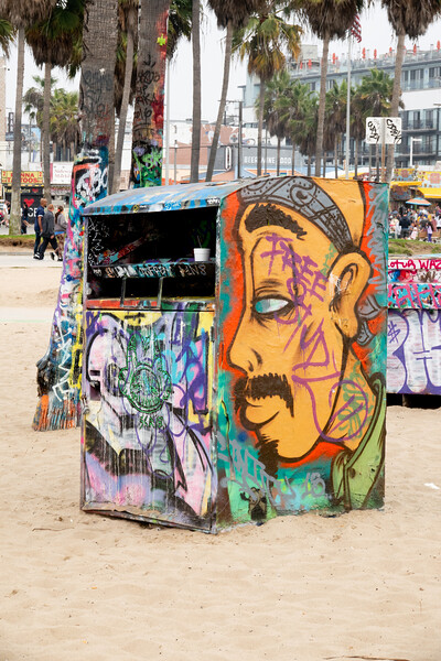 The Art of Venice Beach