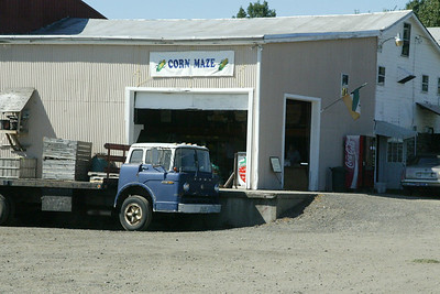Corn Maze Sept 2007