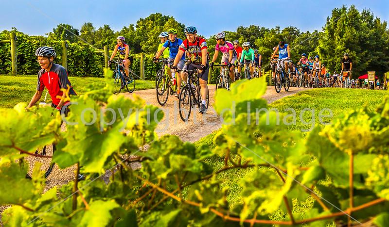 BikeMO 2015