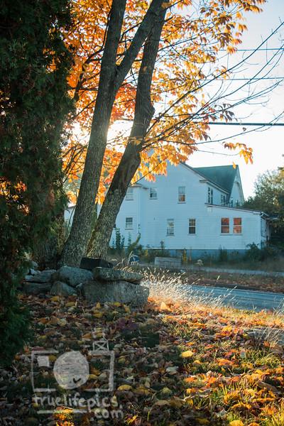 20161019-October 19, 2016 New England (3).jpg