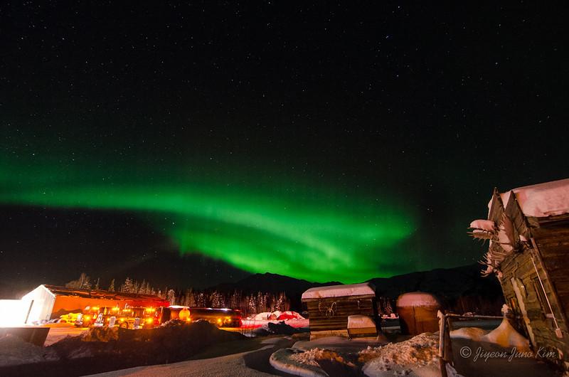 USA-Alaska-Coldfoot-Aurora-3329.jpg